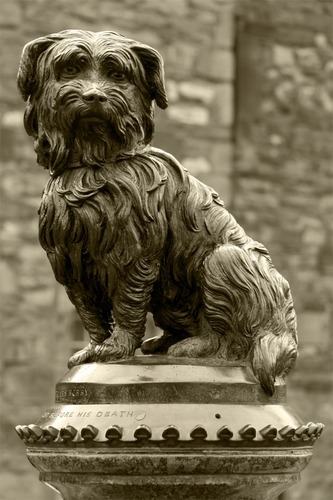Bobby - dog who spending 14 years guarding the grave of his owner - Edinburgh