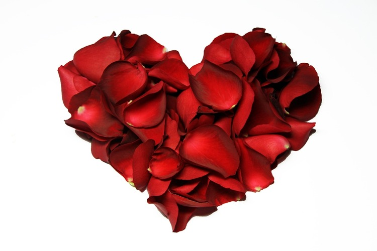 Valentine's Day 2012 - Rose heart